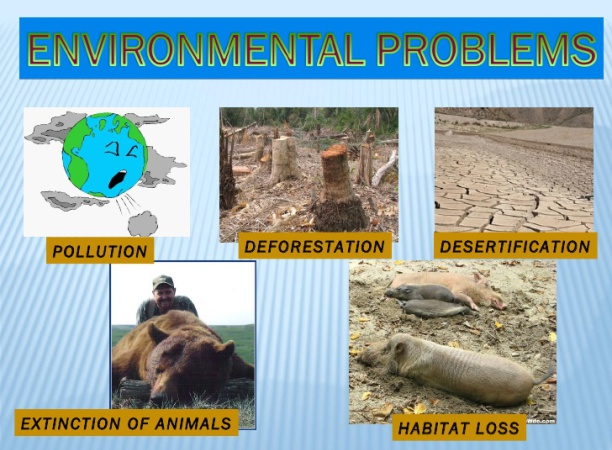 the problem of pollution and its negative impact on our environment